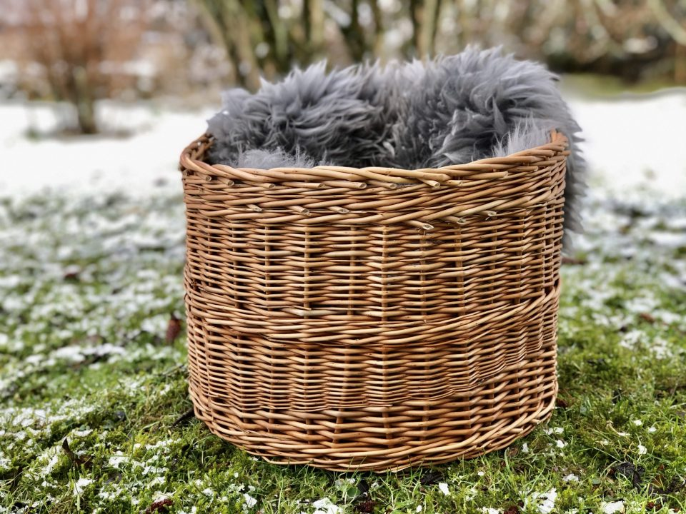 Basket by Christiane Morley